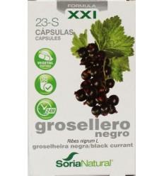 Fytotherapie Soria Ribes nigrum 23-S XXI 30 capsules kopen