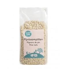 Terrasana RAW pijnboompitten 450 gram | Superfoodstore.nl