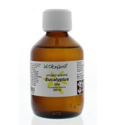 Cruydhof Eucalyptus olie 200 ml | Superfoodstore.nl