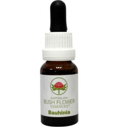 Australian Bush Bauhinia 15 ml | Superfoodstore.nl