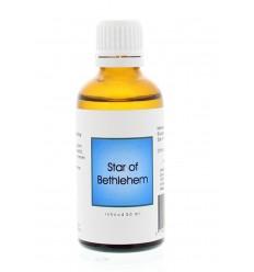 Alive BA29 Star of Bethlehem 50 ml | € 13.51 | Superfoodstore.nl