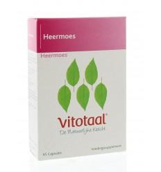 Vitotaal Heermoes 45 capsules | Superfoodstore.nl