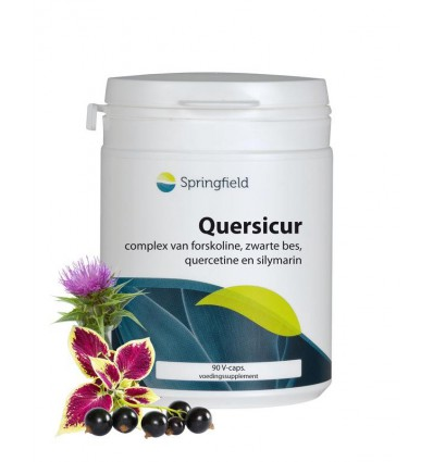 Springfield Quersicur antioxy complex 90 vcaps | € 24.49 | Superfoodstore.nl