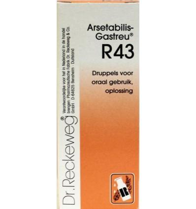 Homeopathie Dr Reckeweg Arsetabilis gastreu R43 50 ml kopen