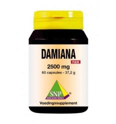Voedingssupplementen SNP Damiana extract 2500 mg puur 60
