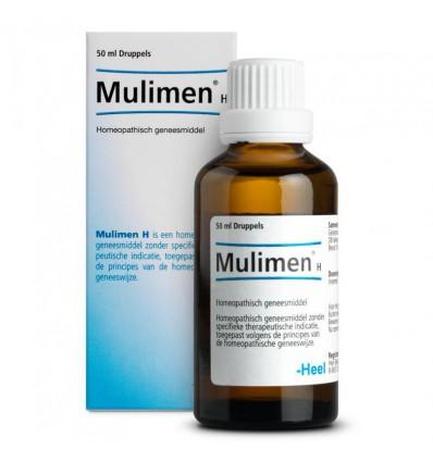 Homeopathie Heel Mulimen H 50 ml kopen