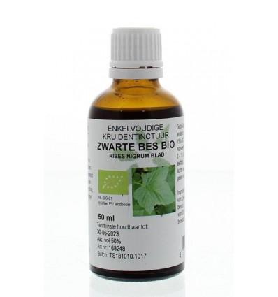 Fytotherapie Natura Sanat Ribes nigrum / zwarte bes tinctuur 50 ml kopen