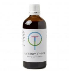 Therapeutenwinkel Equisetum arvense heermoes 100 ml | € 12.67 | Superfoodstore.nl