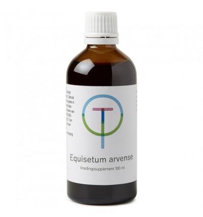 Therapeutenwinkel Equisetum arvense heermoes 100 ml |