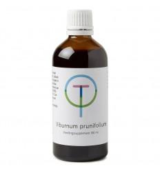 Therapeutenwinkel Viburnum prunufolium 100 ml |