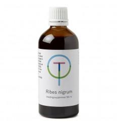Therapeutenwinkel Ribes nigrum zwarte bes 100 ml |