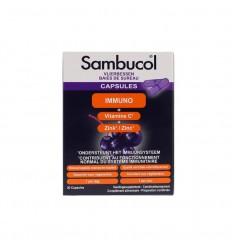 Sambucol Immuno forte 30 capsules | Superfoodstore.nl