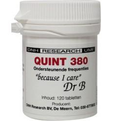 DNH Quint 380 120 tabletten | Superfoodstore.nl