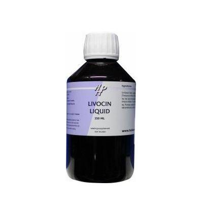 Ayurveda Holisan Livocin 250 ml kopen