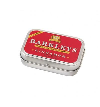 Suikervrij Snoep Barkleys Mints cinnamon sugarfree 15 gram kopen
