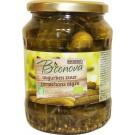 Bionova Augurken zuur 670 gram