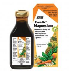 Salus Floradix magnesium 250 ml | Superfoodstore.nl