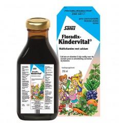Salus Floradix kindervital 250 ml | Superfoodstore.nl