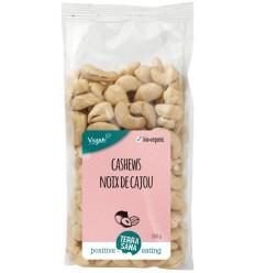 Terrasana Cashewnoten ongeroosterd zonder zout 250 gram |