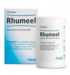 Homeopathie Heel Rhumeel 250 tabletten kopen