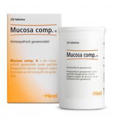 Homeopathie Heel Mucosa compositum H 250 tabletten kopen