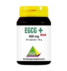 Fytotherapie SNP EGCG+ puur 60 capsules kopen
