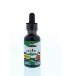 Natures Answer Frambozenblad extract 1:1 alcoholvrij 1000 mg 30