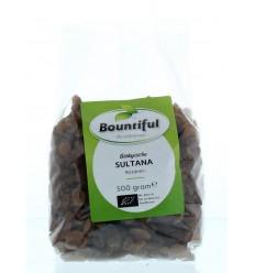 Rozijnen en krenten Bountiful Sultana rozijnen 500 gram kopen