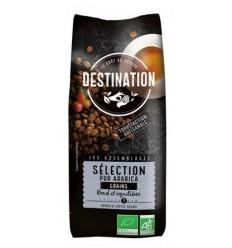 Destination Koffie selection Arabica bonen 500 gram |