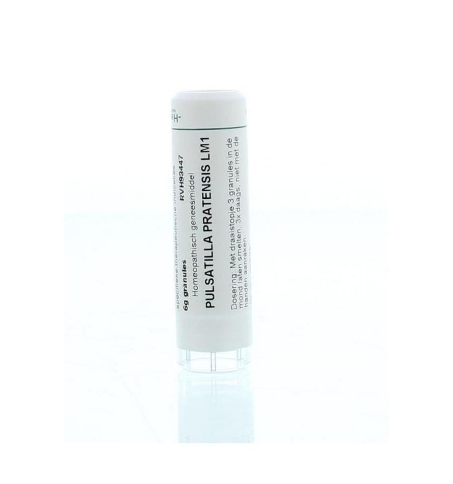 Homeoden Heel Pulsatilla pratensis LM1 6 gram