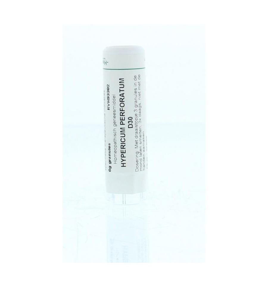 Homeoden Heel Hypericum perforatum D30 6 gram