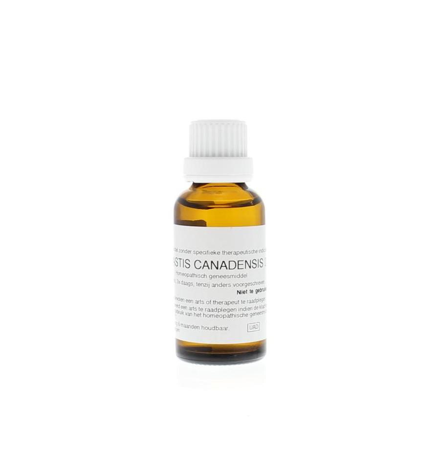 Homeoden Heel Hydrastis canadensis D6 30 ml