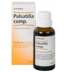 artikel 6 complex Heel Pulsatilla compositum 100 ml kopen