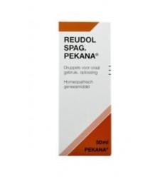 artikel 6 complex Pekana Reudol spag (apo rheum) 50 ml kopen