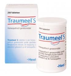 artikel 6 complex Heel Traumeel S 250 tabletten kopen