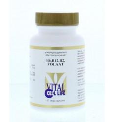 Vitamine B Vital Cell Life Vitamine B6/B12/B2 folaat 60 vcaps