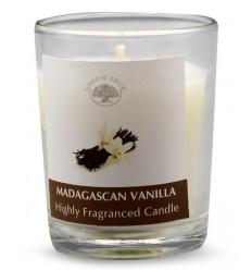 Kaarsen Green Tree Geurkaars Madagascan vanilla votives 55 gram