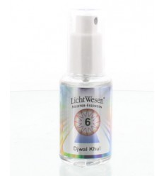 Lichtwesen Djwal khul tinctuur 6 30 ml