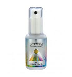 Lichtwesen Scheppingsstraal tinctuur calcium groen 71 30 ml